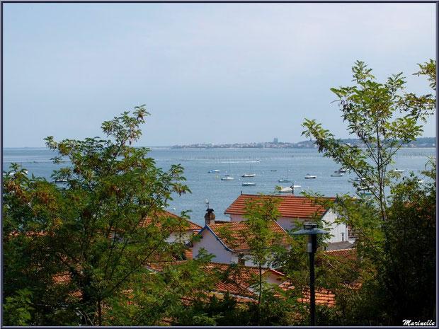 Village de L'Herbe vu des hauteurs, le Bassin d'Arcachon à perte de vue et Arcachon à l'horizon (33)