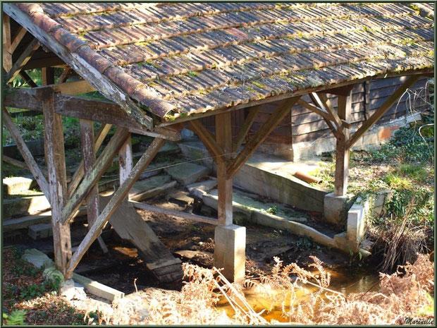 Ancien lavoir au Parc de la Chêneraie, en automne, Gujan-Mestras (Bassin d'Arcachon)