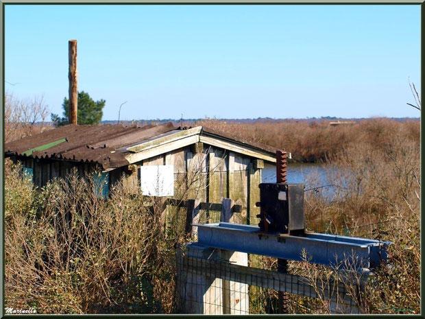 """""""Ecluse du Laour"""" et sa cabane en bordure d'un réservoir sur le Sentier du Littoral, secteur Moulin de Cantarrane, Bassin d'Arcachon"""