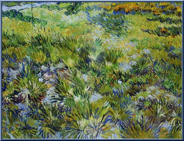 Tableau de lavandes de Van Gogh dans le jardin du monastère de Saint Paul de Mausole à Saint Rémy de Provence (Alpilles - 13)