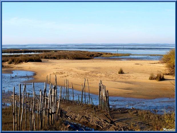 """""""Estey"""" (petit chenal) vers le Bassin d'Arcachon, Sentier du Littoral secteur Moulin Cantarrane (Le Teich), Bassin d'Arcachon (33)"""