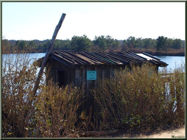 """""""Ecluse du Laour"""" : sa cabane en bordure d'un réservoir sur le Sentier du Littoral, secteur Moulin de Cantarrane, Bassin d'Arcachon"""