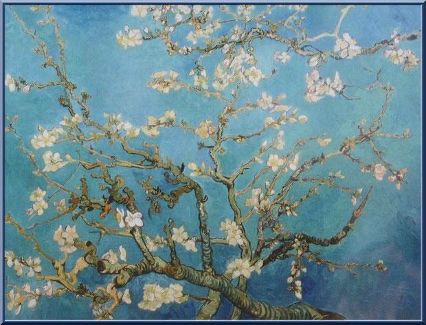 """Tableau """"Branches fleuries d'amandier"""" (1890) de Van Gogh dans le jardin du monastère de Saint Paul de Mausole à Saint Rémy de Provence (Alpilles - 13)"""