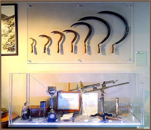"""Le """"Musée de la Lavande"""" à Coustellet (84) : anciens outils (serpettes pour couper la lavande, appareils de mesure distillation...)"""