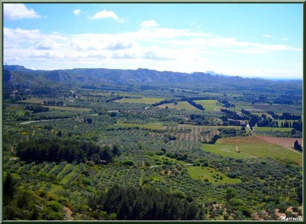 Vue panoramique sur la vallée (oliveraies...) depuis l'esplanade du château, Château des Baux-de-Provence, Alpilles (13)