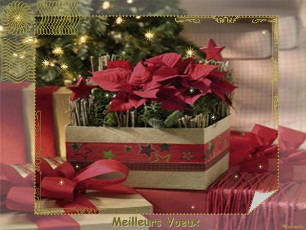 Meilleurs voeux : fleurs en paquet cadeau en habit rouge et or