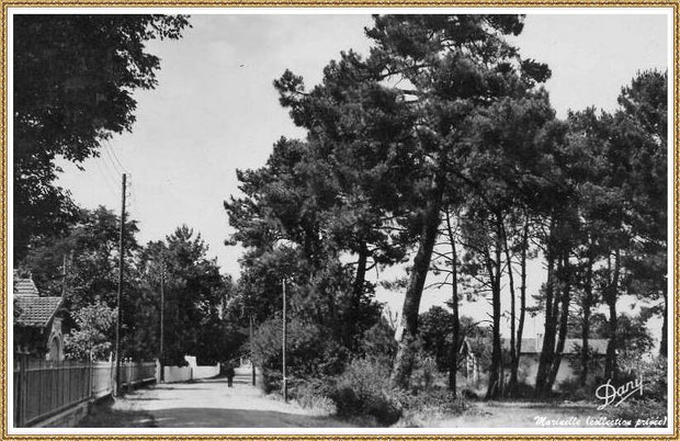 Gujan-Mestras autrefois : La Hume, Avenue de la Plage direction passage à niveau, Bassin d'Arcachon (carte postale, collection privée)