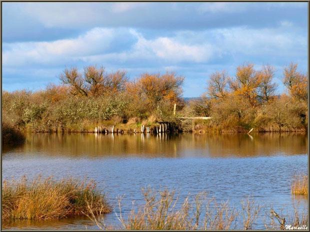 Reflets dans les réservoirs à poissons sur le Sentier du Littoral, Bassin d'Arcachon (33)