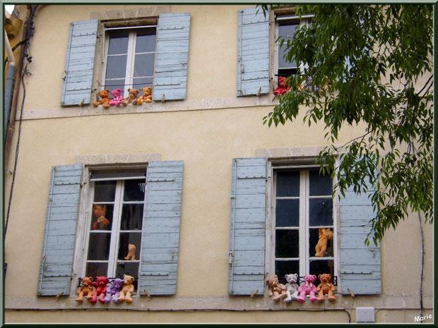 Fenêtres aux nounours dans une ruelle centre ville à Saint Rémy de Provence, Alpilles (13)