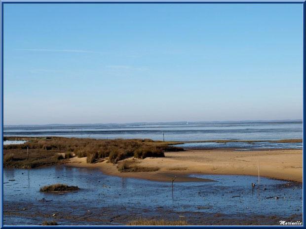 Bande de plage entre marécage et Bassin à marée basse, Sentier du Littoral, secteur Moulin de Cantarrane, Bassin d'Arcachon