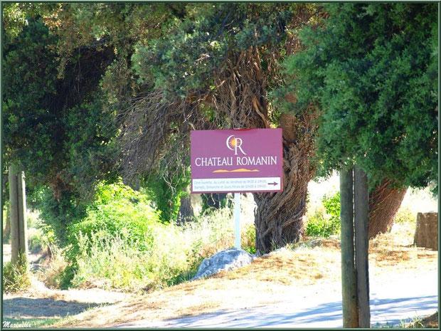 Entrée du vignoble du Château Romanin à Saint Rémy de Provence, Alpilles (13)