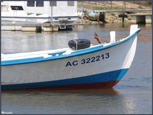 Proue de pinasse revenant de la pêche à la sardine - Fête du Retour de la Pêche à la Sardine 2014 à Gujan-Mestras, Bassin d'Arcachon (33)