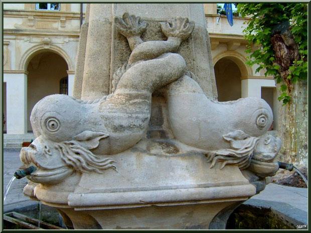 Détail de la fontaine devant la Mairie de Saint Rémy de Provence, Alpilles (13)