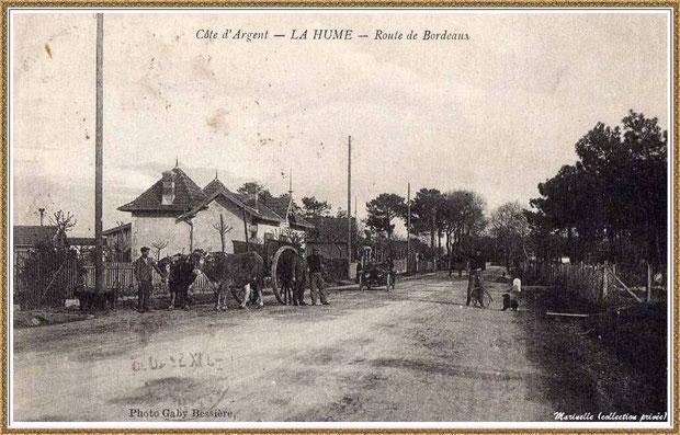 Gujan-Mestras autrefois : en 1917, La Hume, Route de Bordeaux avec attelage de boeufs, Bassin d'Arcachon (carte postale, collection privée)