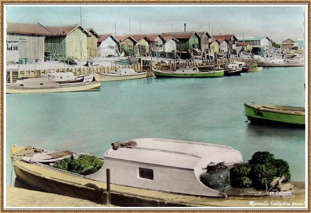 Gujan-Mestras autrefois : Pinasses dans la darse principale du Port de Larros, Bassin d'Arcachon (carte postale -version couleur, collection privée)