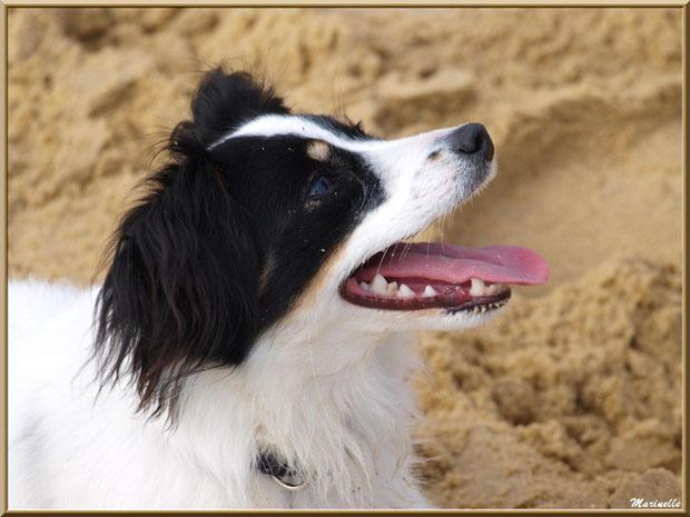 """Ella """"Le Menet"""" à la plage"""