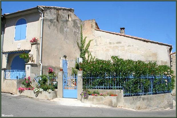 Maison fleurie aux volets bleus à Fontvielle dans les Alpilles (Bouches du Rhône)