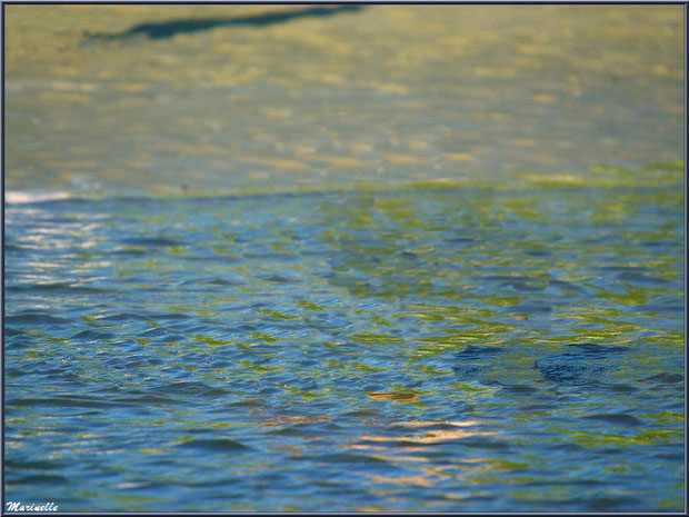 Reflets dans l'eau, côté plage de la jetée à Arès (Bassin d'Arcachon)