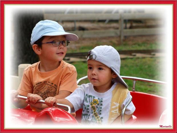 Au train chenille cochons coccinelles, Parc de la Coccinelle, mini-ferme à Gujan-Mestras, Bassin d'Arcachon (33)