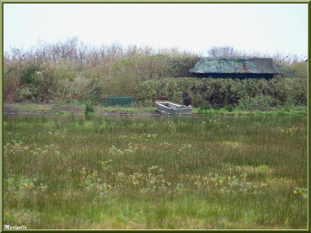Tonne avec son lac et son canot dissimulés dans les prés salés, Sentier du Littoral secteur Pont Neuf, Le Teich, Bassin d'Arcachon (33)