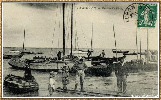 Bâteaux de pêche en 1910 : pinassotes, pinasses à voile et un canot sardinier, Bassin d'Arcachon (33)