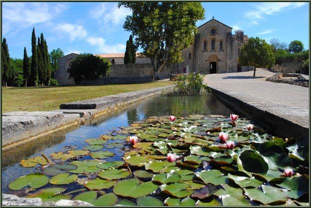 Abbaye de Silvacane, Vallée de la Basse Durance (13) : façade, jardin et son bassin