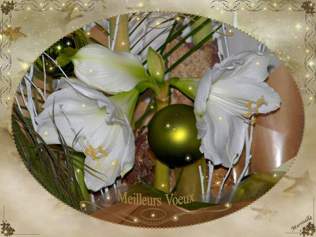 Meilleurs voeux : Amarilys, boules avec féerie blanche et or