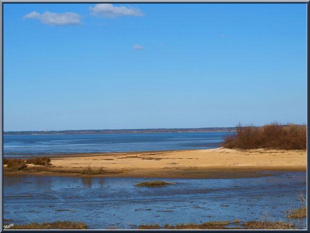 Bande de plage, côté Bassin, sur le Sentier du Littoral, secteur Moulin de Cantarrane, Bassin d'Arcachon