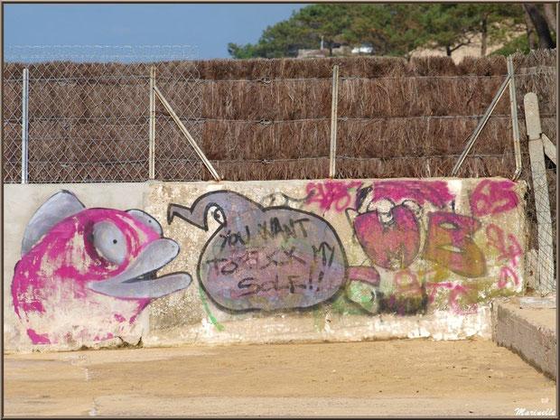 Tags et graffitis sur une murette de la jetée à La Corniche à Pyla-sur-Mer, Bassin d'Arcachon (33)
