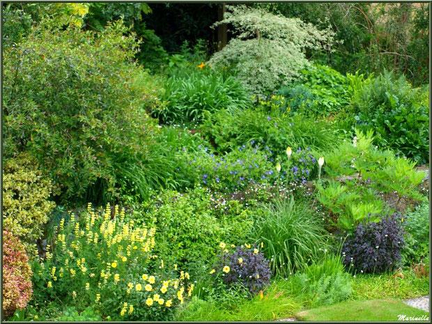 Les Jardins De Kerdalo Trédarzec