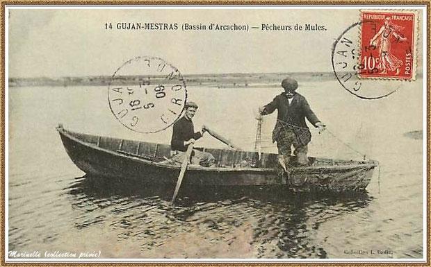 Gujan-Mestras autrefois : en 1909, Pêcheurs de Mules, Bassin d'Arcachon (carte postale, collection privée)