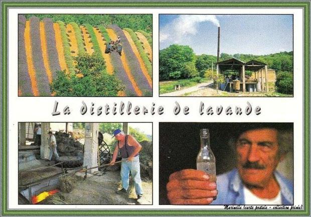 Il y a juste quelques années... La distillerie de lavande (carte postale multi vues - collection privée)