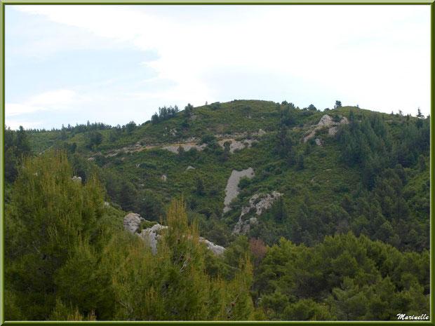 Le Val d'Enfer et sa garrigue, Baux-de-Provence, Alpille (13)