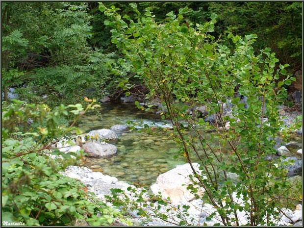 Derrière la verdure coule le Gave d'Ossau, ici entre les Eaux-Chaudes et Gabas, Vallée d'Ossau (64)
