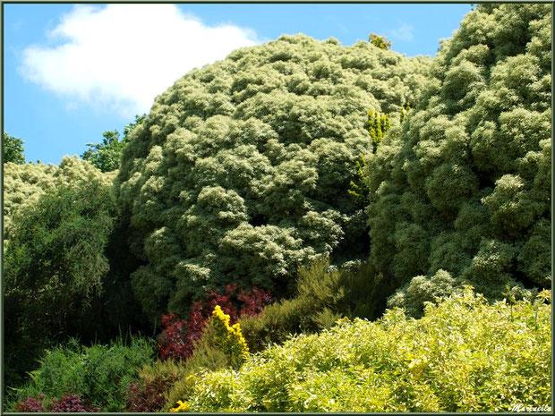 Les Jardins Du Kerdalo Tredarzec 22 Site De