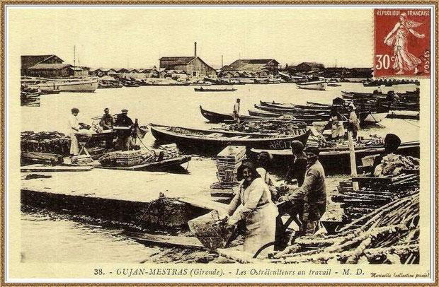Gujan-Mestras autrefois : en 1937-1938, ostréiculteurs au travail dans la darse principale du Port de Larros, Bassin d'Arcachon (carte postale, collection privée)