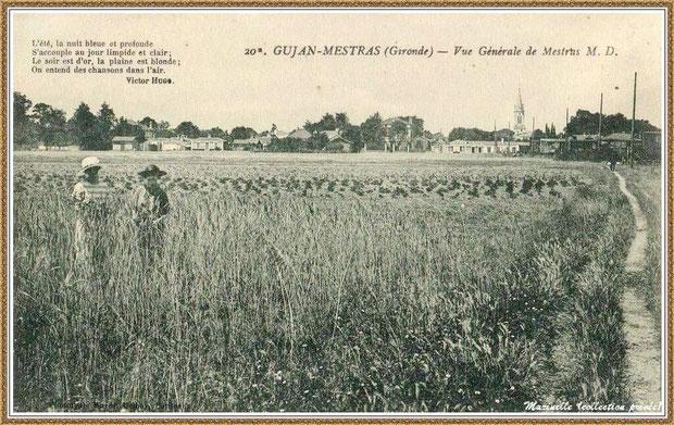 Gujan-Mestras autrefois : Sentier de Daguet, aujourd'hui Rue Paul Pouget, et en fond maisons Rue du Truc devenue Rue du Maréchal Joffre, Bassin d'Arcachon (carte postale, collection privée)