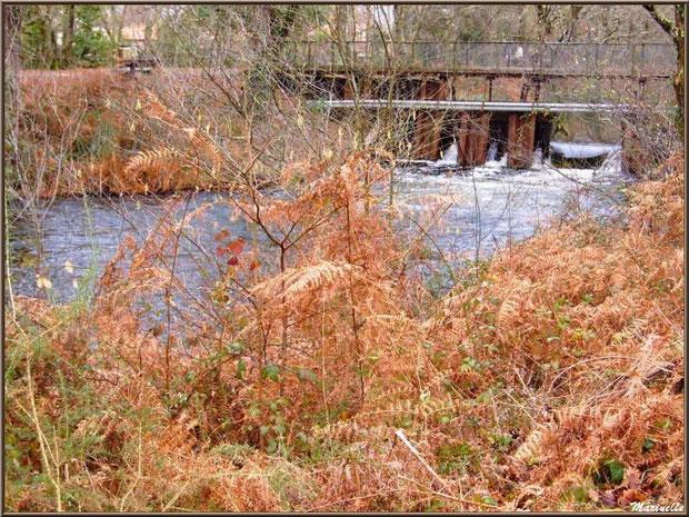 Une des écluses surmontée d'un pont sur le Canal des Landes au Parc de la Chêneraie à Gujan-Mestras (Bassin d'Arcachon)