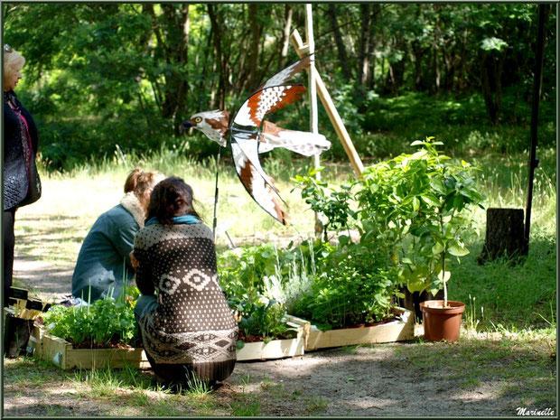 Atelier jardinage bio à la Fête de la Nature 2013 au Parc de la Chêneraie à Gujan-Mestras (Bassin d'Arcachon)