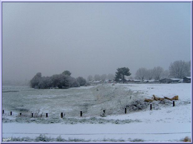 Les prés salés Ouest et les cabanes ostréicoles du port de La Teste de Buch sous la neige en décembre 2010, Bassin d'Arcachon