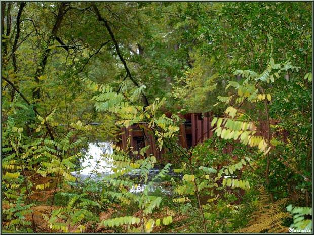 Une des écluses derrière la végétation automnale sur le Canal des Landes au Parc de la Chêneraie à Gujan-Mestras (Bassin d'Arcachon)