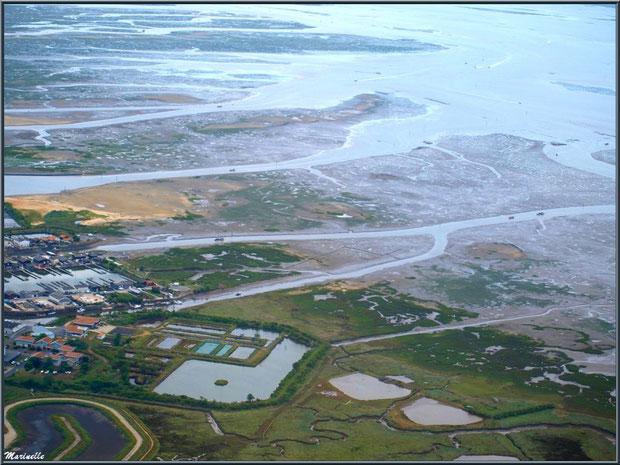 Gujan Mestras à marée montante avec ses prés salés, ses réservoirs, les ports de La Barbotière et du Canal, Bassin d'Arcachon vu du ciel (33)