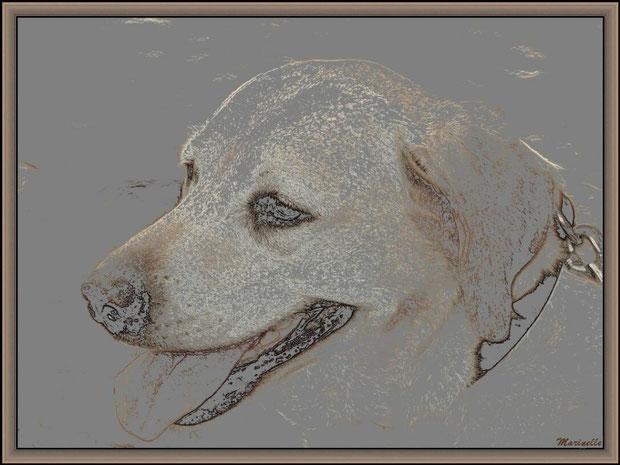 Tina, portrait