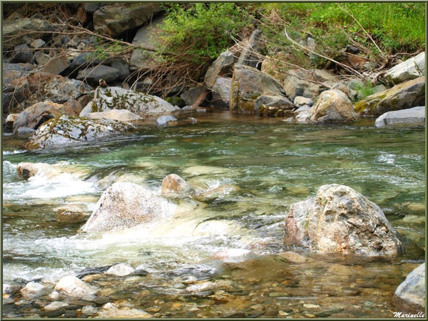 Pierres et remous dans le Gave d'Ossau entre les Eaux-Chaudes et Gabas, Vallée d'Ossau (64)