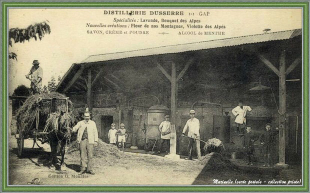 Autrefois... Distillerie (carte postale - collection privée)
