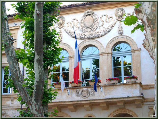 La Mairie de Saint Rémy de Provence, Alpilles (13)