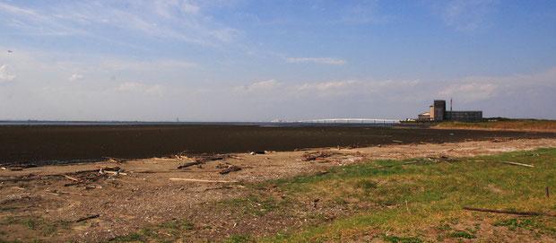 黒っぽく見える部分が潮が引いた後の干潟
