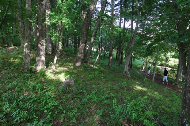 森の中を少年野球の子供たちが何周も走らされていた。 起伏が多いので大変そうだ