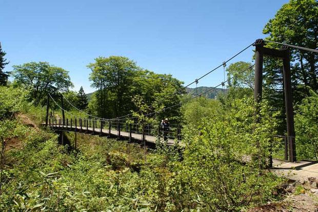 シボ沢の吊り橋。 近くにノウゴウイチゴが咲いていた。