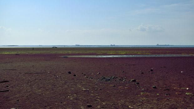 干潮で広い干潟が広がっていた。 遠くに大型タンカーが行列して順番待ちしているのが見えた。